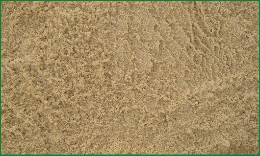 Washed Beach Sand